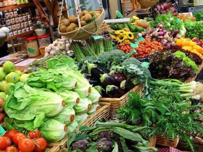 cibo-verdura
