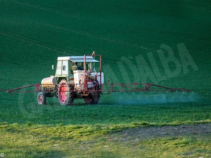 Fungicidi, insetticidi, diserbanti, sono dannosi per molteplici organismi