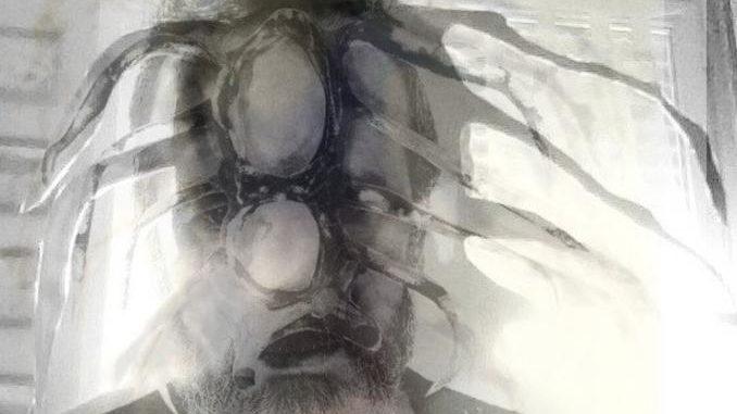 """Secondo capitolo per il progetto """"La Tela"""" del pittore Luca Giordana"""