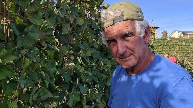 Monforte d'Alba: muore travolto dal mezzo agricolo