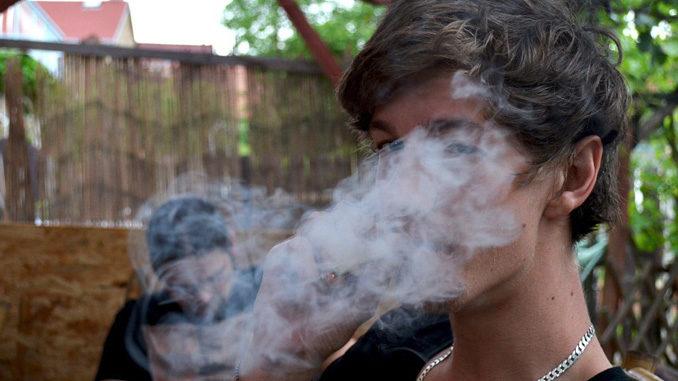 Droga: polizia interrompe festino e trova serra marijuana