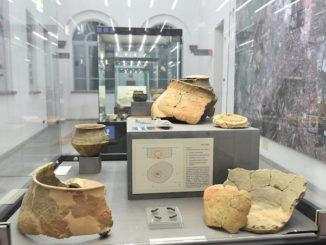 Aperto il museo civico archeologicoe di scienze naturali Eusebio di Alba