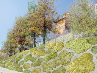 Santa Vittoria: il camouflage in centro sarà ispirato al botanico Bertero