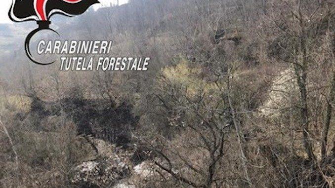 In fiamme un bosco a Roccaverano: interviene un elicottero da Torino