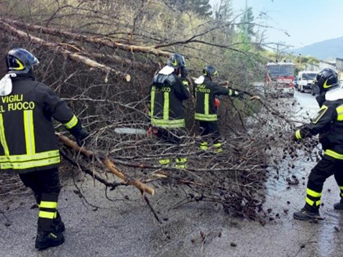 vigili fuoco alberi pericolanti