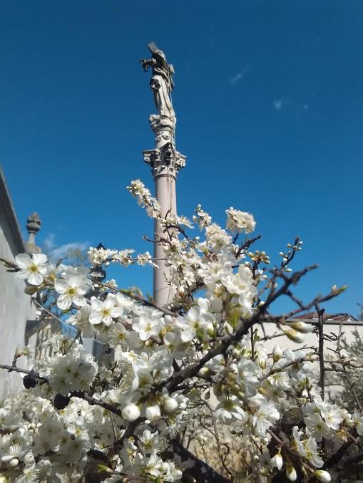 prunetto del Santuario della Madonna dei fiori – Ph Stefano Tibaldi (4)