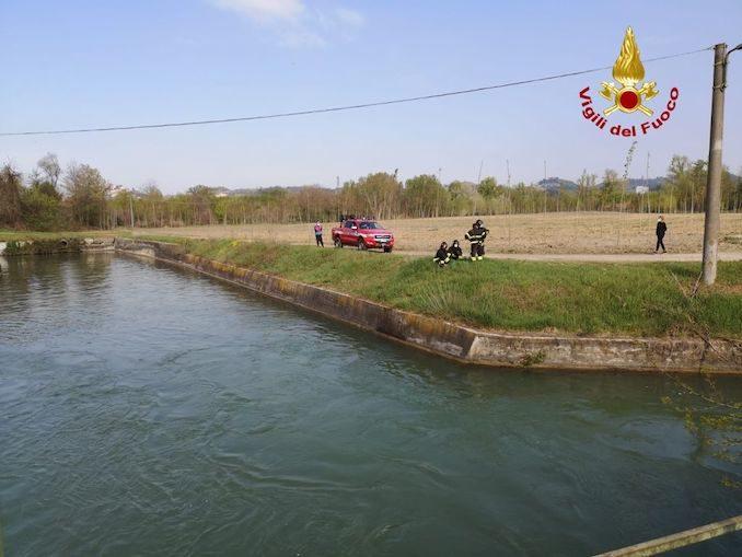 Roddi: salvato dai pompieri un capriolo caduto nel canale 1