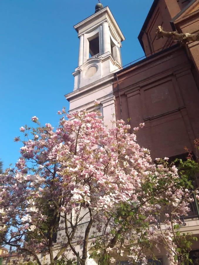 Madonna dei fiori