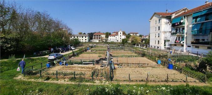 Ad Alba consegnati 77 orti urbani e avviati progetti educativi e sociali 1