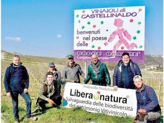 I Vinaioli di Castellinaldo hanno rinnovato la cartellonistica in paese e sulla strada del Barbera