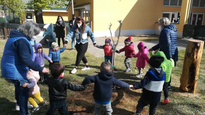 Bra: un albero in memoria della maestra d'asilo scomparsa