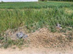 Nelle campagne tra Bra e Pollenzo buche e rifiuti la fanno da padroni 2