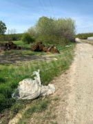 Nelle campagne tra Bra e Pollenzo buche e rifiuti la fanno da padroni 3