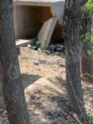 Nelle campagne tra Bra e Pollenzo buche e rifiuti la fanno da padroni 9