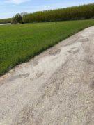 Nelle campagne tra Bra e Pollenzo buche e rifiuti la fanno da padroni 10