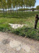 Nelle campagne tra Bra e Pollenzo buche e rifiuti la fanno da padroni 11