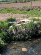 Nelle campagne tra Bra e Pollenzo buche e rifiuti la fanno da padroni 16