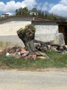Nelle campagne tra Bra e Pollenzo buche e rifiuti la fanno da padroni 17