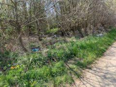 Nelle campagne tra Bra e Pollenzo buche e rifiuti la fanno da padroni 18