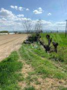 Nelle campagne tra Bra e Pollenzo buche e rifiuti la fanno da padroni 19