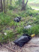 I rifiuti al lago San Biagio di Alba 1