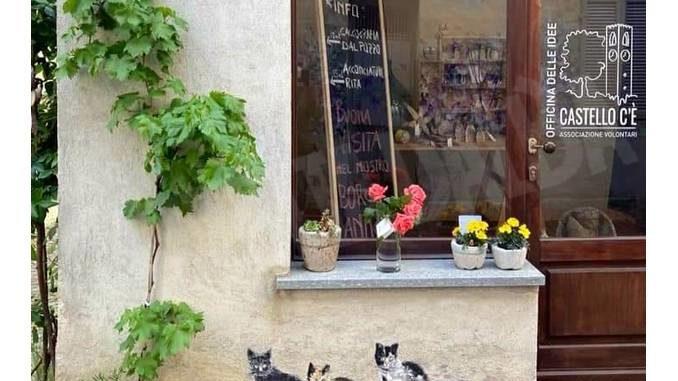 A Dogliani l'associazione Castello c'è lancia l'iniziativa delle rose sospese