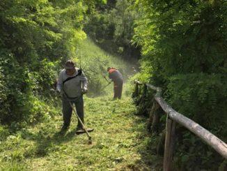 Dogliani: il volontari della Pro loco puliscono i sentieri