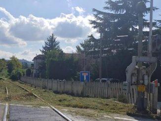 Alba: obbligo di taglio degli alberi di altezza superiore a quattro metri per i proprietari dei terreni in prossimità dei binari lungo la tratta ferroviaria Alba-Castagnole delle Lanze 1