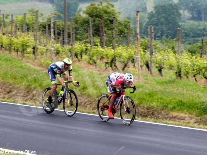 Giro d'Italia: Van der Hoorn ci riprova, ma stavolta vince Sagan