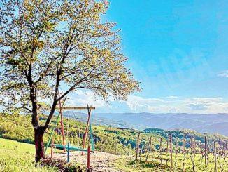 A Cossano un'altalena e sedie giganti per ammirare il paesaggio collinare