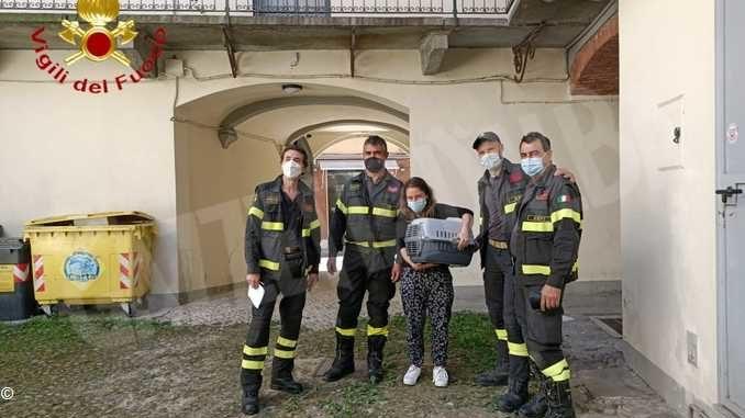 I Vigili del fuoco di Asti salvano un gatto nel centro cittadino
