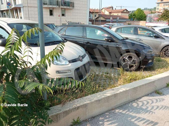 Erba parcheggio1