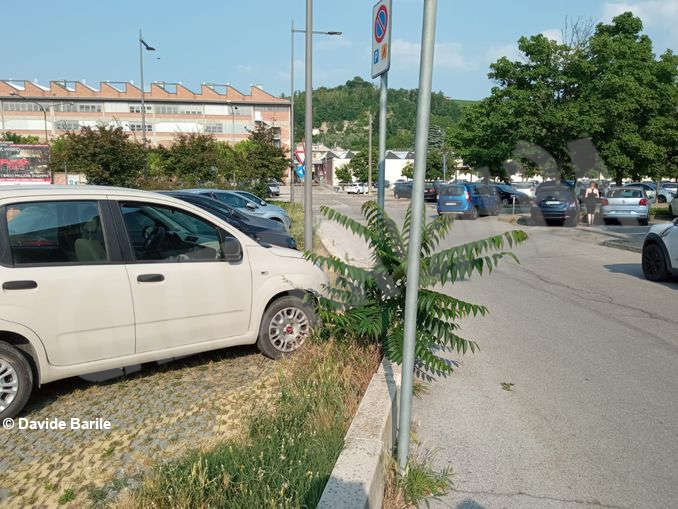 Erba parcheggio3