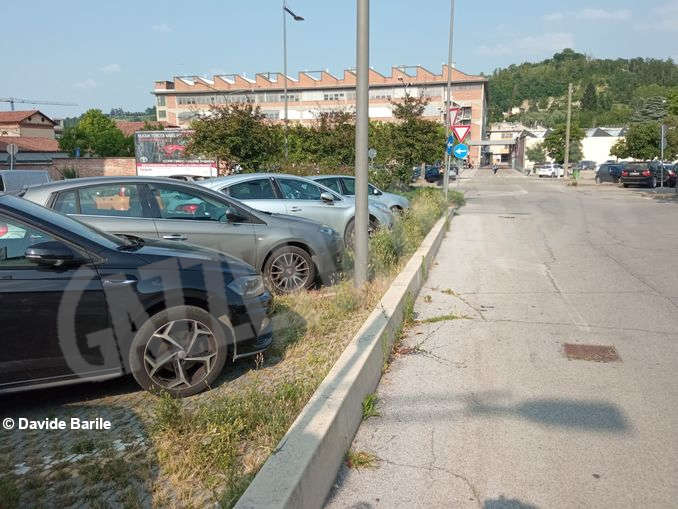 Erba parcheggio5