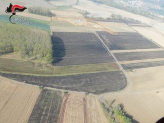 Metalli pesanti nei terreni sui quali era finito il falso compost della Olmo Bruno