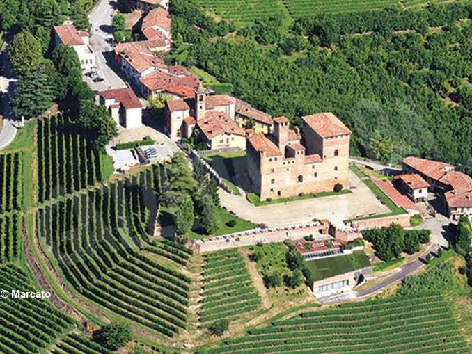 La vigna del castello di Grinzane Cavour diventa un museo 1