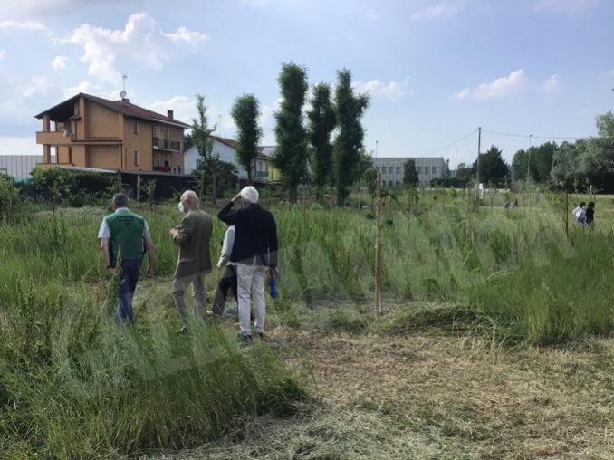 Inaugurato dal Rotary Club Bra il primo bosco urbano della Provincia 1