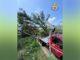 Disagi e danni in tutta la regione provocati dai violenti nubifragi: proseguono nell'astigiano gli interventi dei Vigili del fuoco 1