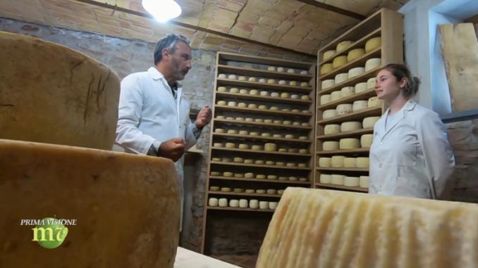 Canale 5 ospite a Murazzano dell'azienda agricola Il forletto