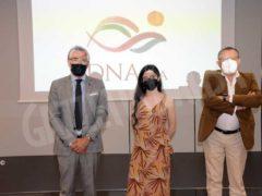 Parte DNAlba, antologia virtuale sull'albesità in tutte le sue forme 1