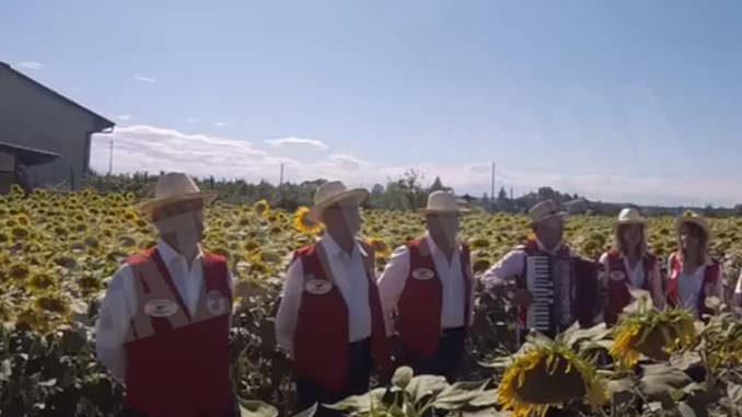Terminerà domani il concorso fotografico legato alla fioritura di girasoli a Farigliano