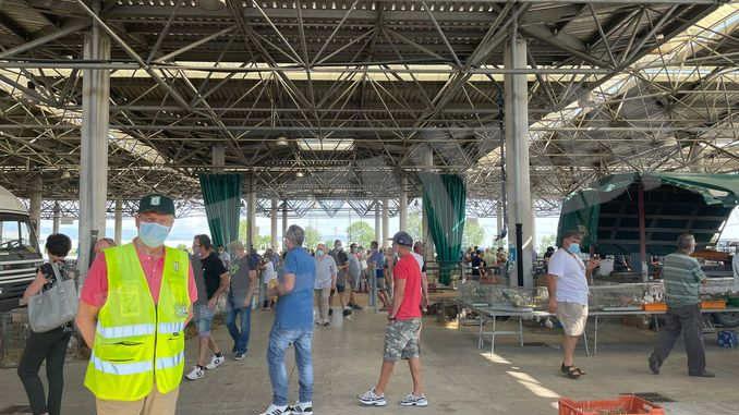 Domenica, al Miac di Cuneo, ci sarà il mercatino dei piccoli animali