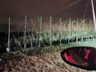 Violento nubifragio sul Roero: notte di interventi per i pompieri
