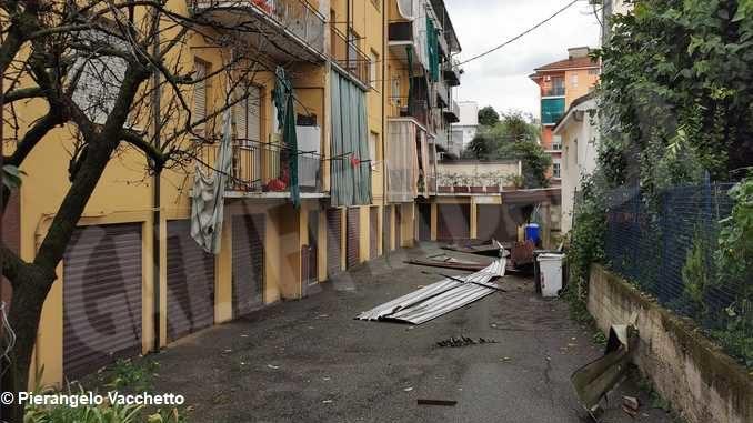 Forte temporale ad Alba: abbattuto un tetto via Pietro Ferrero e molti alberi 4