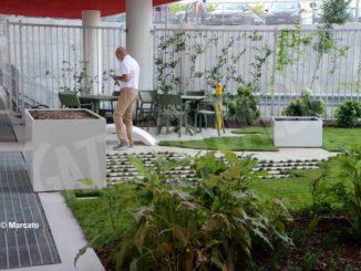 Un anno di vita per l'ospedale nuovo: debuttano i giardini terapeutici 1