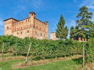 Barolo en primeur: al castello di Grinzane una grande gara di beneficenza per progetti di utilità sociale