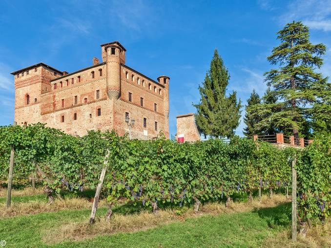 vigna castello grinzane