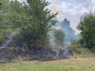 Incendi boschivi: 21 i casi censiti nella Granda dall'inizio dell'anno. Multe per 27mila euro