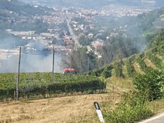 Incendio di sterpaglie domato dai Vigili del fuoco a Rodello