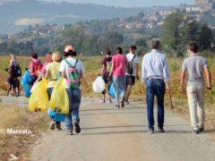 World clean up day: Alba pulisce le strade attorno alla tangenziale 1